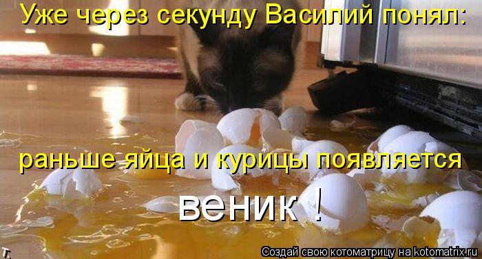 Котоматрица: Уже через секунду Василий понял: раньше яйца и курицы появляется веник !