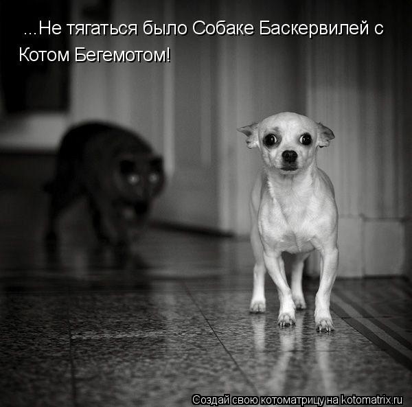 Котоматрица: ...Не тягаться было Собаке Баскервилей с  Котом Бегемотом!