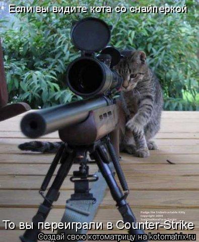 Котоматрица: Если вы видите кота со снайперкой То вы переиграли в Counter-Strike