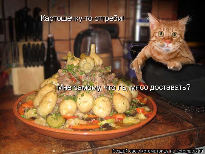 Котоматрица: Картошечку-то отгреби! Мне самому, что ль, мясо доставать?