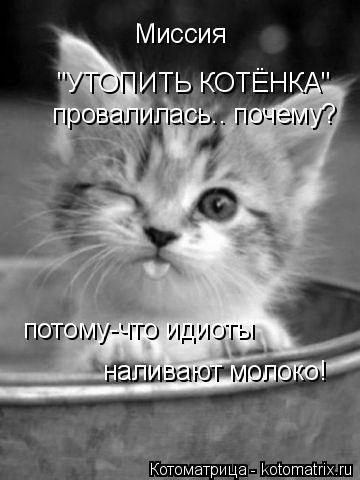 """Котоматрица: Миссия  """"УТОПИТЬ КОТЁНКА""""  провалилась.. почему? потому-что идиоты  наливают молоко!"""