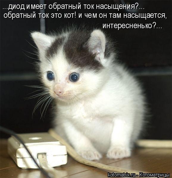 Котоматрица: обратный ток это кот! и чем он там насыщается, интересненько?... ...диод имеет обратный ток насыщения?...