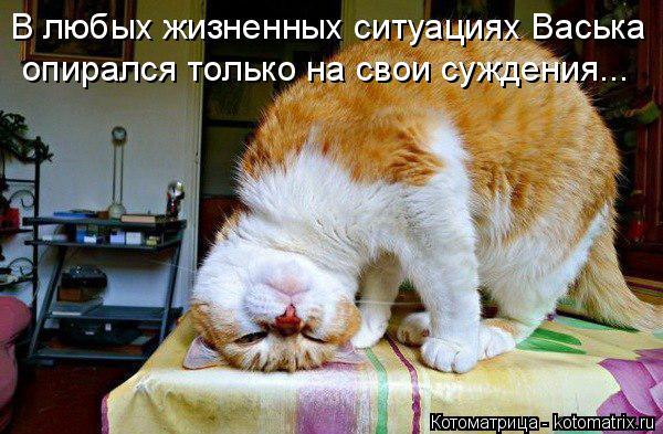 Котоматрица: В любых жизненных ситуациях Васька опирался только на свои суждения...