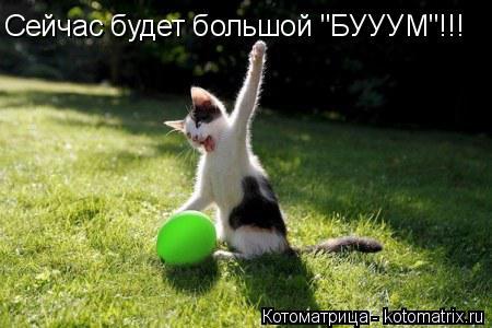 """Котоматрица: Сейчас будет большой """"БУУУМ""""!!!"""