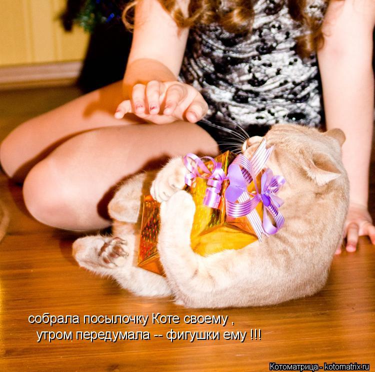 Котоматрица: собрала посылочку Коте своему , утром передумала -- фигушки ему !!!