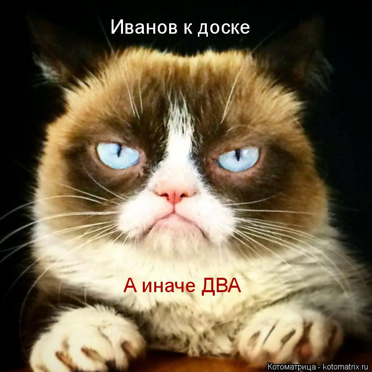 Котоматрица: Иванов к доске А иначе ДВА