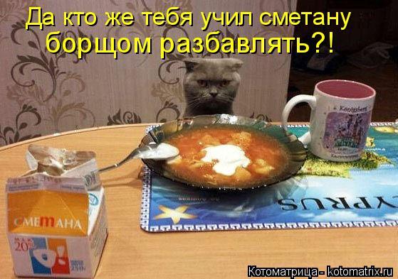 http://kotomatrix.ru/images/lolz/2014/09/16/kotomatritsa_K.jpg