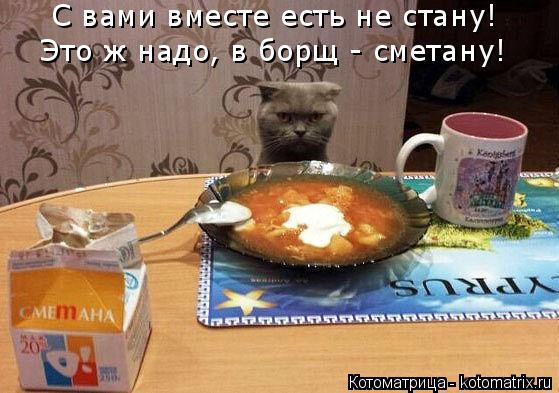 Котоматрица: С вами вместе есть не стану! Это ж надо, в борщ - сметану!