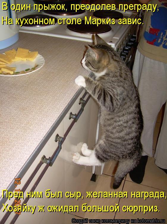 Котоматрица: В один прыжок, преодолев преграду, На кухонном столе Маркиз завис. Пред ним был сыр, желанная награда, Хозяйку ж ожидал большой сюрприз.