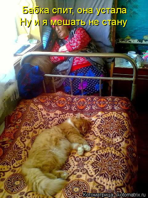 Котоматрица: Бабка спит, она устала Ну и я мешать не стану