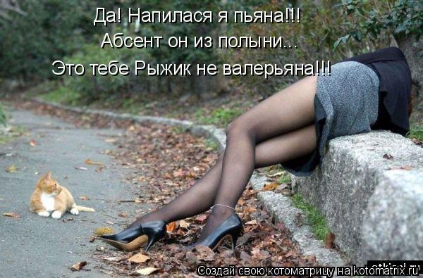 Котоматрица: Да! Напилася я пьяна!!! Абсент он из полыни... Это тебе Рыжик не валерьяна!!!