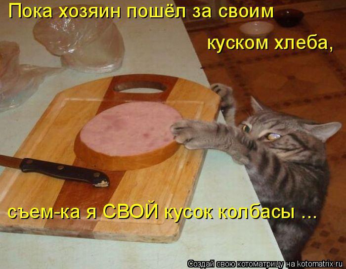 Котоматрица: Пока хозяин пошёл за своим куском хлеба, съем-ка я СВОЙ кусок колбасы ...