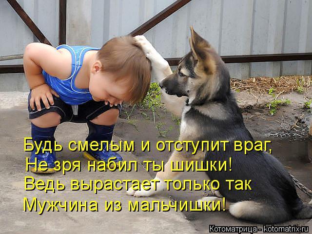 http://kotomatrix.ru/images/lolz/2014/09/18/kotomatritsa_LQ.jpg