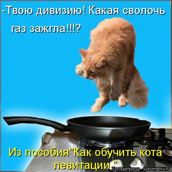 """Котоматрица: -Твою дивизию! Какая сволочь газ зажгла!!!? Из пособия""""Как обучить кота левитации."""""""