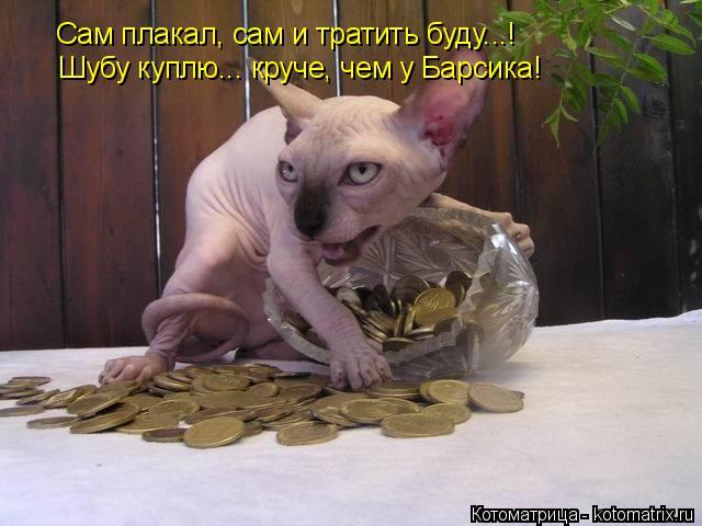 Котоматрица: Сам плакал, сам и тратить буду...! Шубу куплю... круче, чем у Барсика!