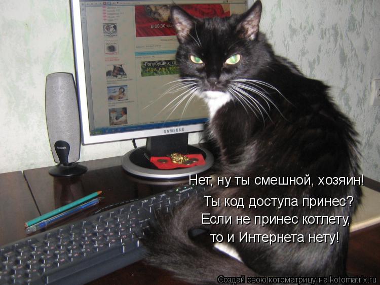 Котоматрица: Ты код доступа принес? Нет, ну ты смешной, хозяин! Если не принес котлету,  то и Интернета нету!