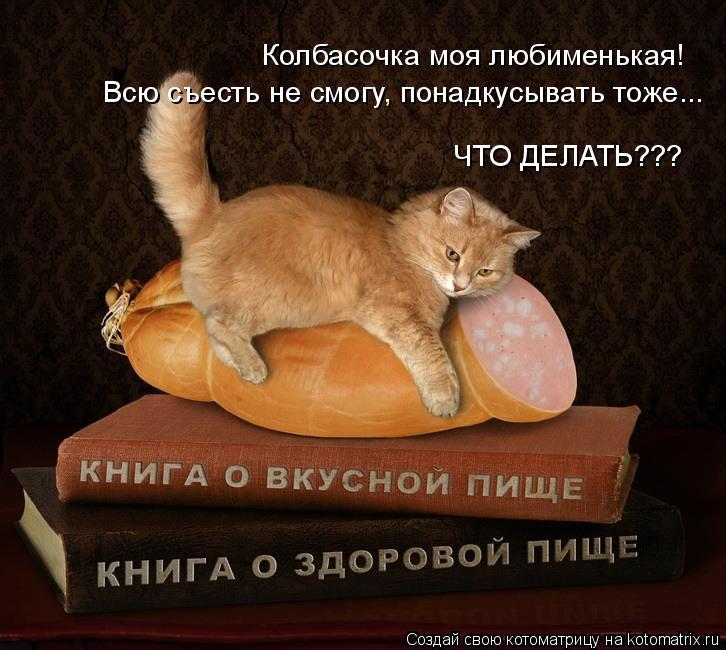 Котоматрица: Колбасочка моя любименькая! Всю съесть не смогу, понадкусывать тоже... ЧТО ДЕЛАТЬ???