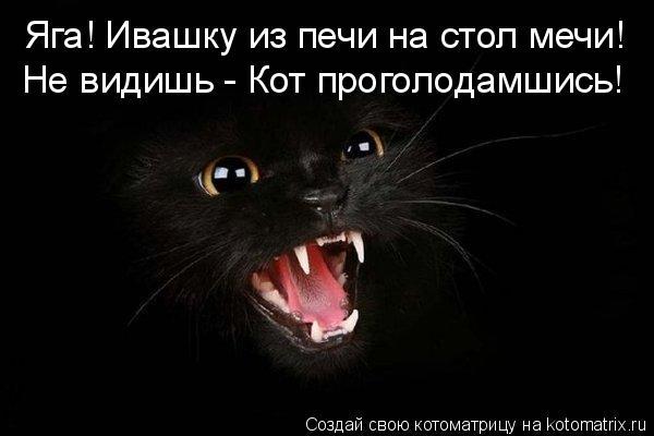 Котоматрица: Яга! Ивашку из печи на стол мечи! Не видишь - Кот проголодамшись!