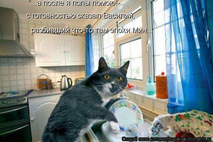"""Котоматрица: """"...а после я полы помою!- разбивший что-то там эпохи Мин... с готовностью сказал Василий,"""