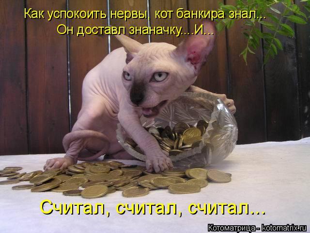 Котоматрица: Как успокоить нервы, кот банкира знал... Он доставл знаначку....И... Считал, считал, считал...