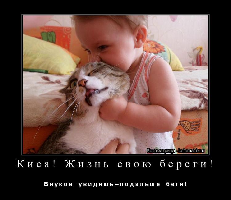 Котоматрица: Киса! Жизнь свою береги! В н у к о в    у в и д и ш ь – п о д а л ь ш е    б е г и !