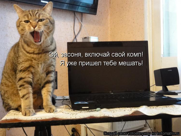 Котоматрица: Эй, засоня, включай свой комп! Я уже пришел тебе мешать!
