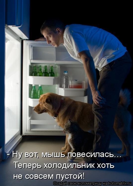 Котоматрица: - Ну вот, мышь повесилась…  Теперь холодильник хоть не совсем пустой!