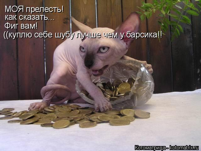 Котоматрица: МОЯ прелесть! как сказать... Фиг вам! ((куплю себе шубу лучше чем у барсика!!