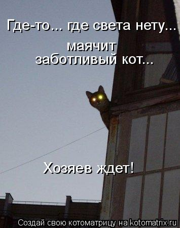 Котоматрица: Где-то... где света нету... маячит  заботливый кот... Хозяев ждет!