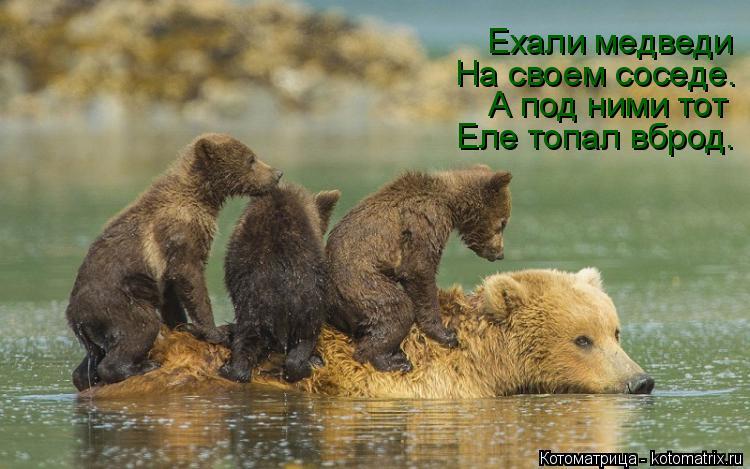 Котоматрица: Еле топал вброд. А под ними тот На своем соседе. Ехали медведи