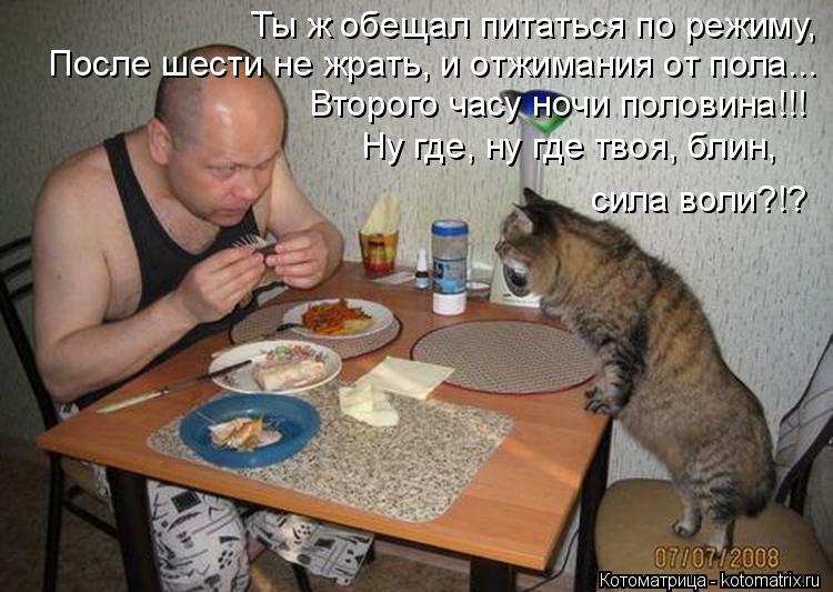 Котоматрица: Ты ж обещал питаться по режиму,  После шести не жрать, и отжимания от пола... Второго часу ночи половина!!! Ну где, ну где твоя, блин,  сила воли?!?
