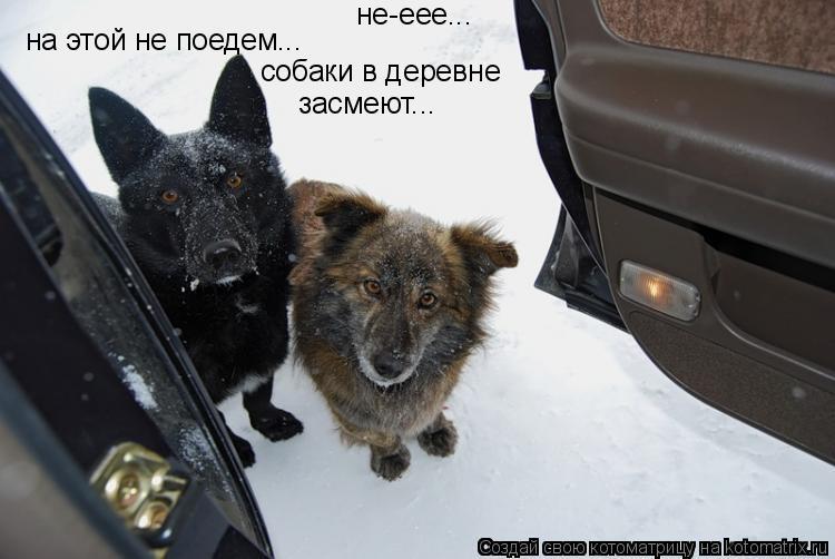 Котоматрица: не-еее... на этой не поедем... собаки в деревне засмеют...