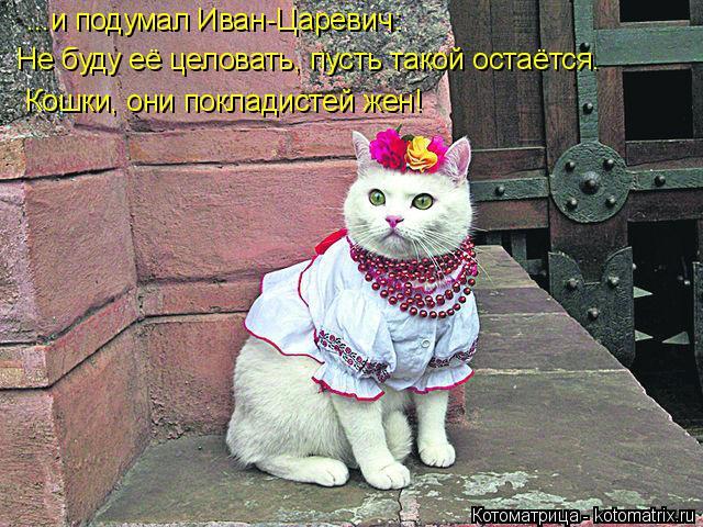 Котоматрица: ...и подумал Иван-Царевич:   Не буду её целовать, пусть такой остаётся.  Кошки, они покладистей жен!