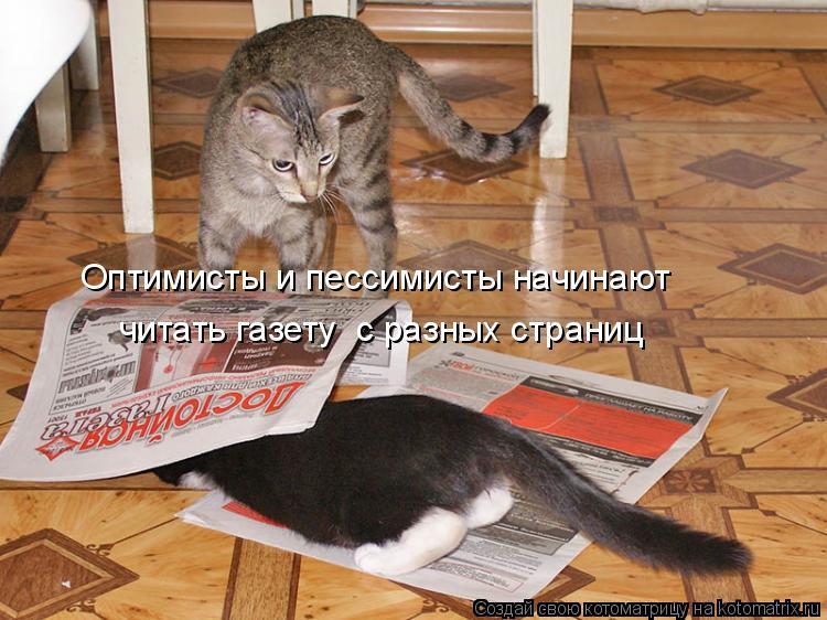 Котоматрица: Оптимисты и пессимисты начинают  читать газету  с разных страниц