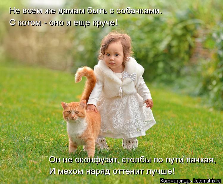 Котоматрица: Не всем же дамам быть с собачками. С котом - оно и еще круче! Он не оконфузит, столбы по пути пачкая, И мехом наряд оттенит лучше!