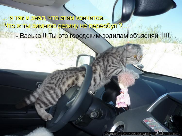 Котоматрица: ... я так и знал, что этим кончится... Что ж ты зимнюю резину не переобул ?.... - Васька !! Ты это городским водилам объясняй !!!!!....