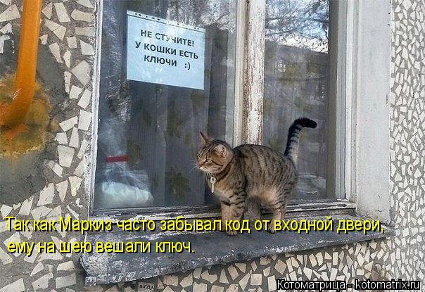 Котоматрица: Так как Маркиз часто забывал код от входной двери, ему на шею вешали ключ.