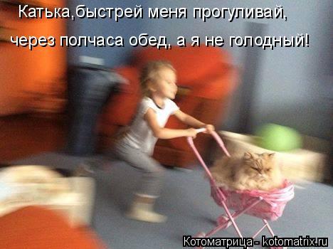 http://kotomatrix.ru/images/lolz/2014/09/28/kotomatritsa_u1.jpg