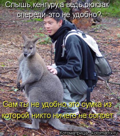 Котоматрица: Слышь,кенгуру,а ведь рюкзак спереди-это не удобно? Сам ты не удобно,это сумка из  которой никто ничего не сопрёт.