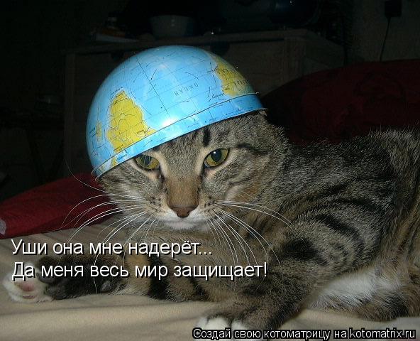 Котоматрица: Уши она мне надерёт...  Да меня весь мир защищает!