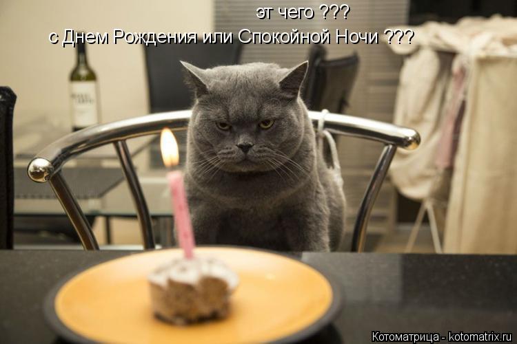 Котоматрица: эт чего ??? с Днем Рождения или Спокойной Ночи ???
