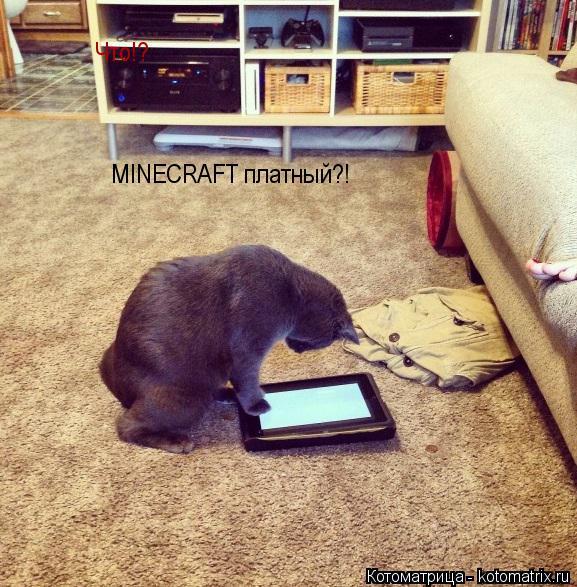 Котоматрица: Что!? MINECRAFT платный?!