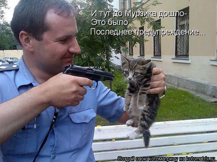 Котоматрица: И тут до Мурзика дошло- Это было Последнее предупреждение...