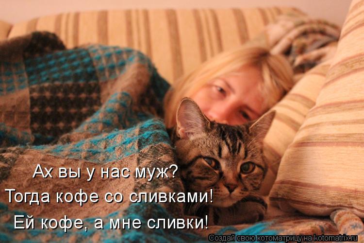 http://kotomatrix.ru/images/lolz/2014/10/03/kotomatritsa_j2.jpg