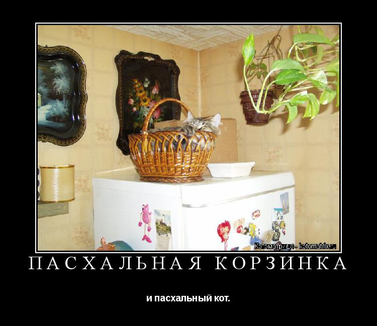 Котоматрица: ПАСХАЛЬНАЯ КОРЗИНКА и пасхальный кот.