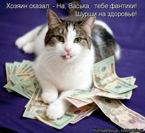 Котоматрица: Хозяин сказал: - На, Васька,  тебе фантики! Шурши на здоровье!