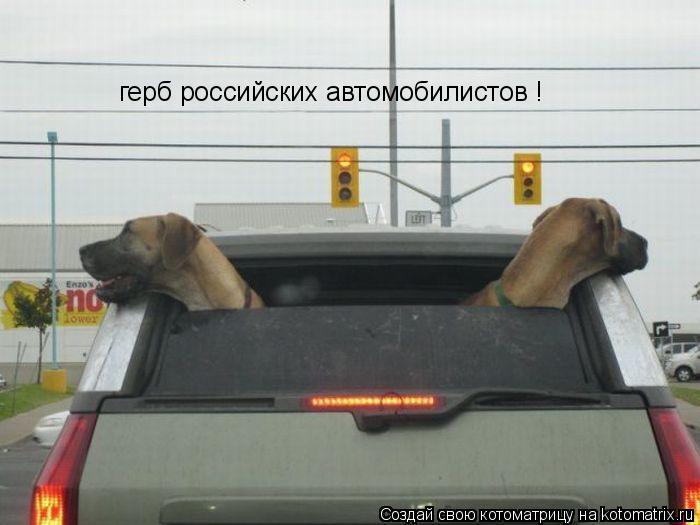 Котоматрица: герб российских автомобилистов !