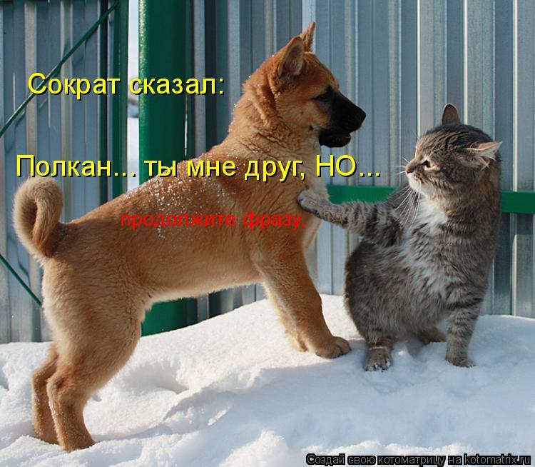 Котоматрица: Сократ сказал: Полкан... ты мне друг, НО... продолжите фразу.