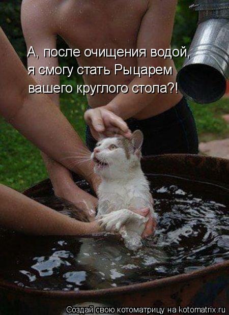 Котоматрица: А, после очищения водой, я смогу стать Рыцарем вашего круглого стола?!