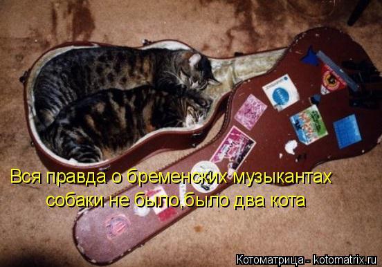 Котоматрица: Вся правда о бременских музыкантах собаки не было,было два кота